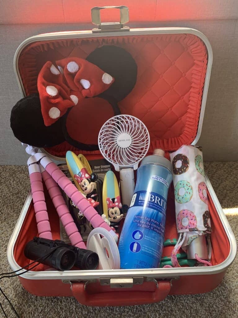 Disney-Packing-20-Things-That-You-Need-scaled